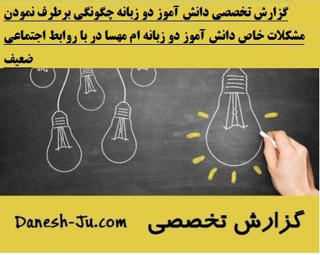 گزارش تخصصی دانش آموز دو زبانه
