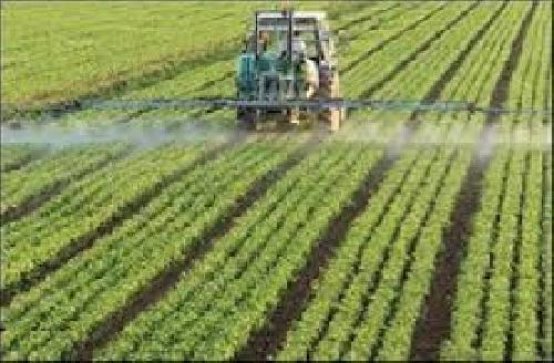 گزارش کارورزی رشته مهندسی کشاورزی در گميشان، مركز خدمات كشاورزي گميشان